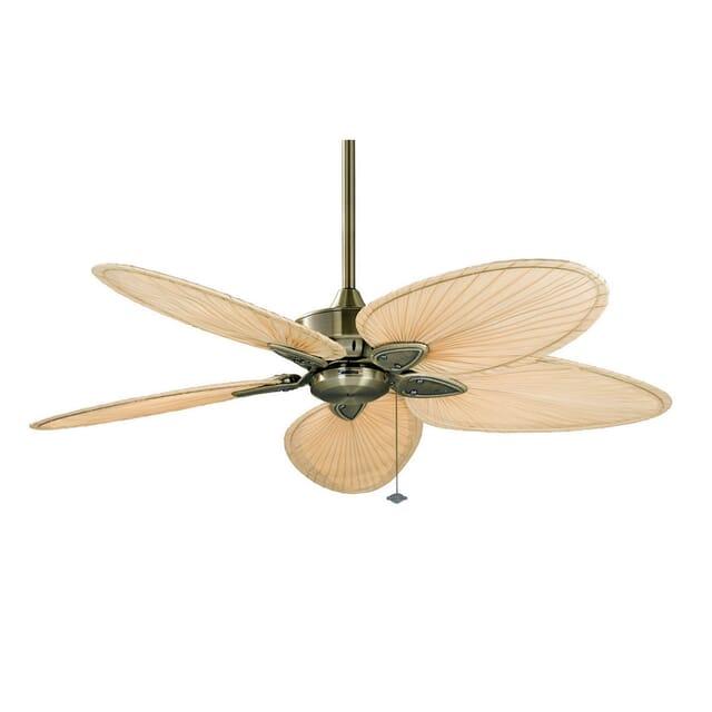 Fanimation 52-inch Windpointe Indoor Ceiling Fan in Brass w/Palm Blades